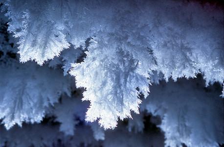Volim... IceCrystals4