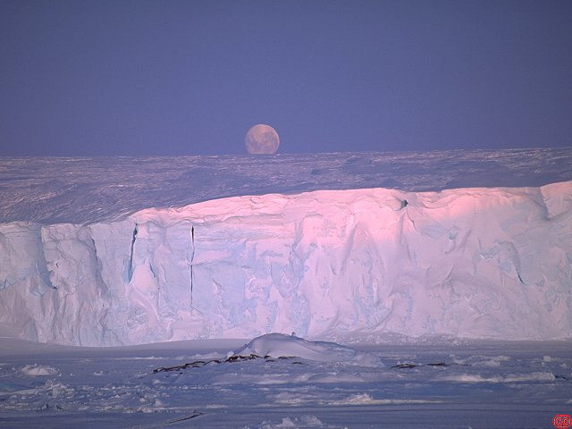 [GlacierMoon.jpg] Moonrise above an iceberg of the Astrolabe glacier at Dumont d'Urville