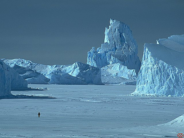 [TopIceberg.jpg] The highest, hardest and last iceberg Grosnitho and I climbed. Climbing icebergs is a lots less fun than one might think, between the cold freezing your hands on the ice axe, the high-pressure ice that shatters on hitting it and the risk of having the berg tip over...