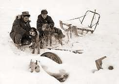 Movie About  Dogs That Survived In Antartic