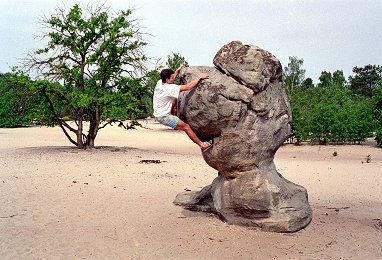 [Bilboquet.jpg] Some of the boulders at Fontainebleau have to be climbed to be believed...